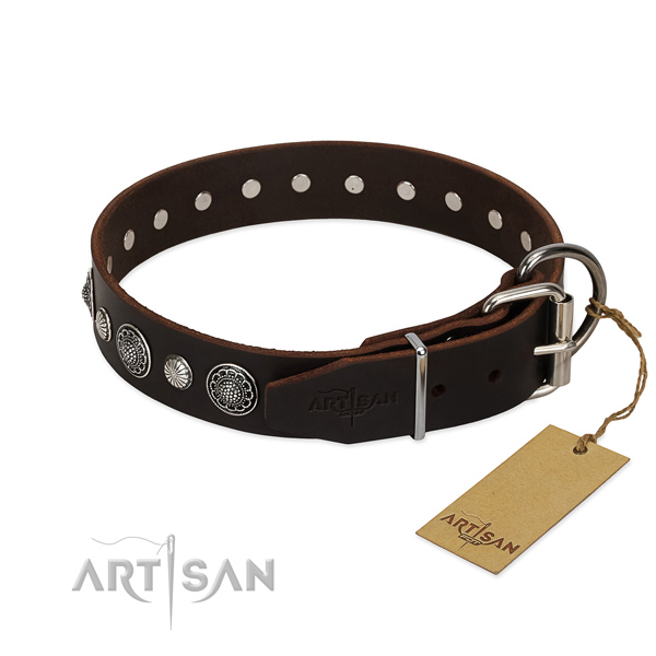 High quality natural leather dog collar with corrosion resistant fittings