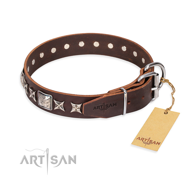 Durable embellished dog collar of full grain leather