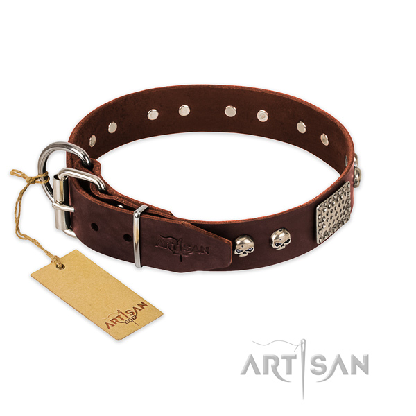 Corrosion proof D-ring on stylish walking dog collar