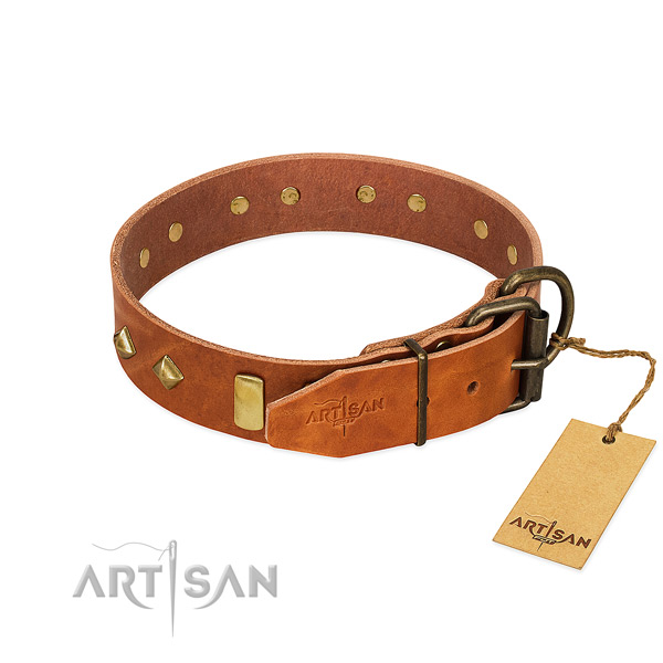 Everyday use leather dog collar with unique studs