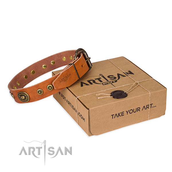 Full grain natural leather dog collar made of quality material with rust-proof hardware