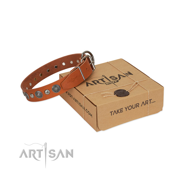 Natural leather collar with reliable D-ring for your lovely four-legged friend