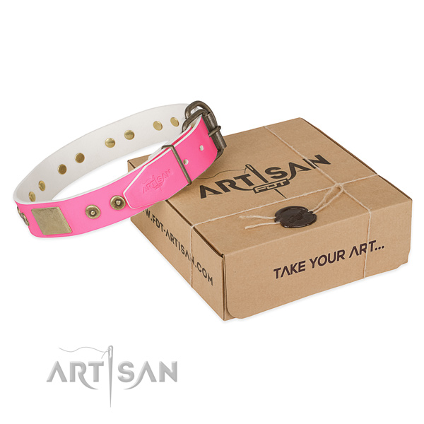 Reliable decorations on dog collar for easy wearing