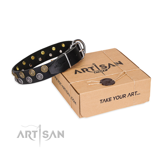Handy use dog collar of best quality leather with embellishments