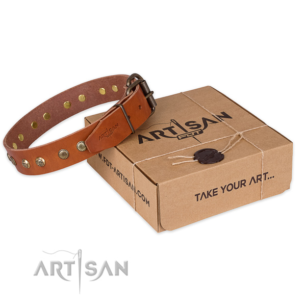 Rust-proof hardware on full grain leather collar for your beautiful canine