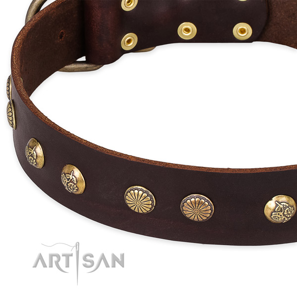 Full grain leather collar with corrosion resistant buckle for your handsome dog