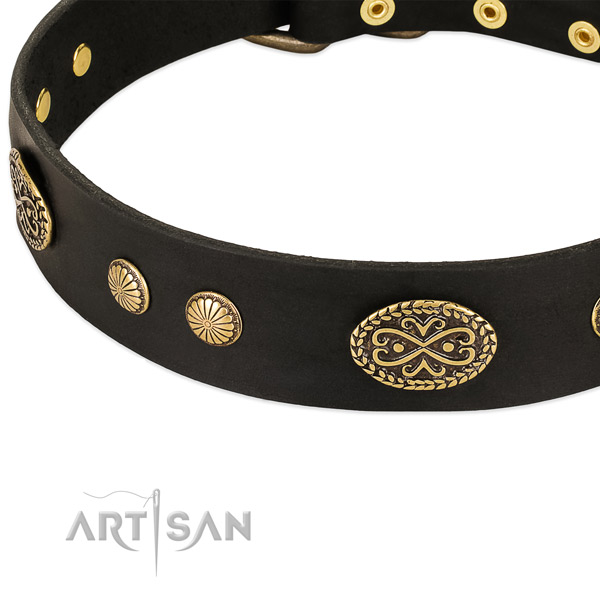 Strong embellishments on genuine leather dog collar for your four-legged friend