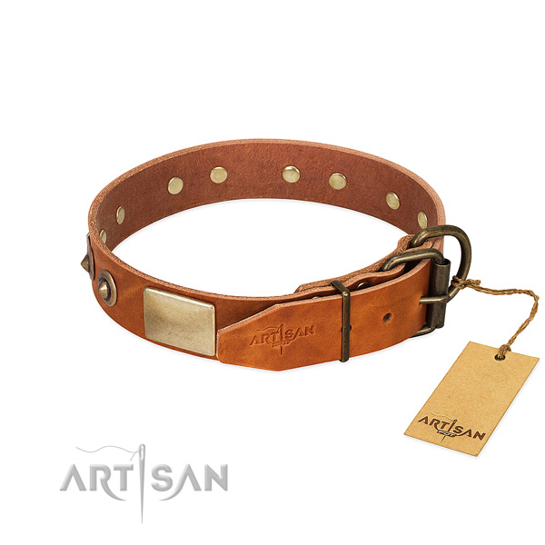 Corrosion proof hardware on walking dog collar