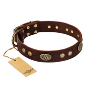 """Old-fashioned Glamor"" FDT Artisan Brown Leather Amstaff Collar with Old Bronze Look Plates and Circles"