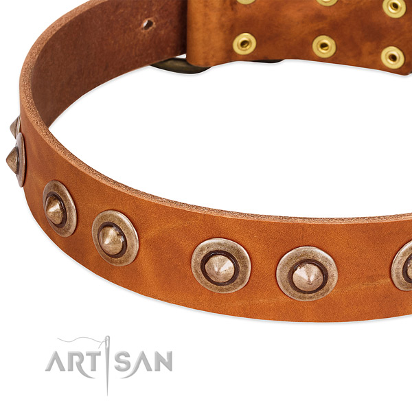 Durable hardware on genuine leather dog collar for your dog