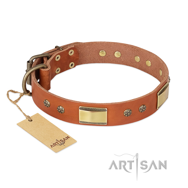 Embellished full grain natural leather collar for your dog