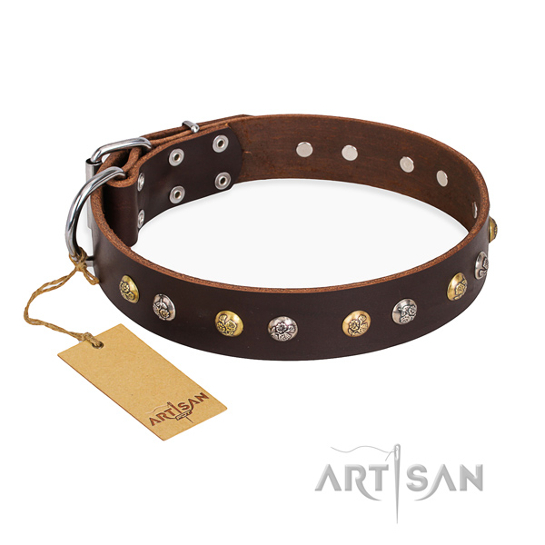 Daily use fashionable dog collar with strong D-ring