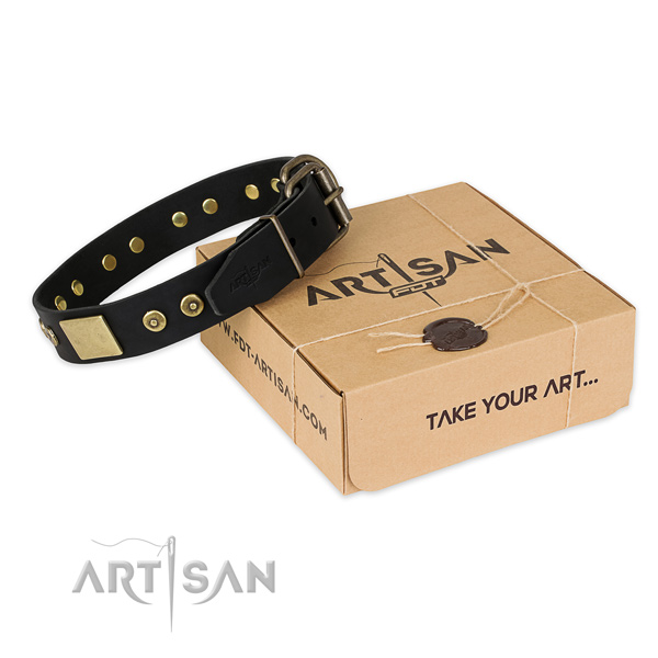 Durable traditional buckle on full grain genuine leather dog collar for walking