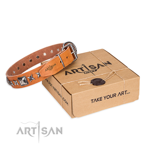 Daily use full grain leather dog collar with embellishments