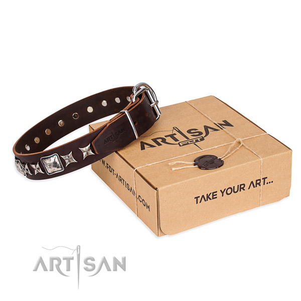 Walking dog collar of durable full grain genuine leather with embellishments