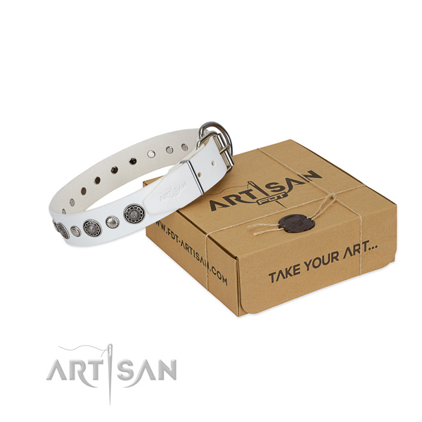 Full grain leather collar with reliable traditional buckle for your stylish pet