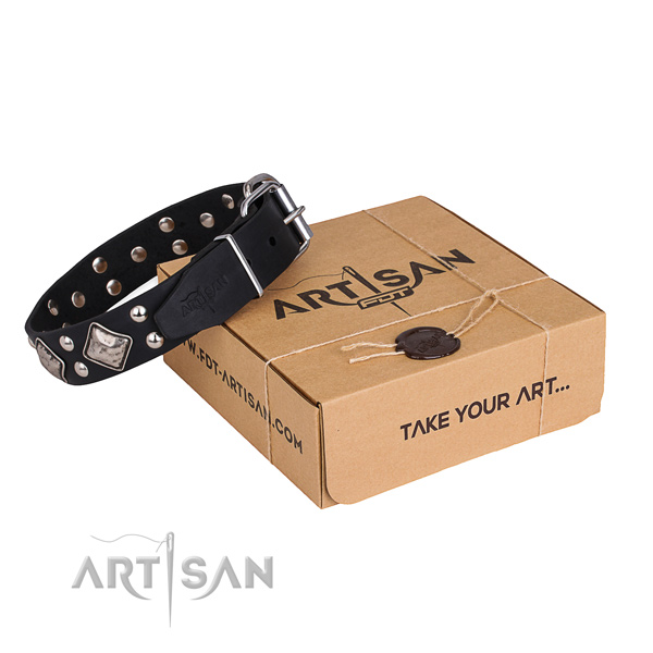 Daily walking dog collar with Remarkable reliable adornments