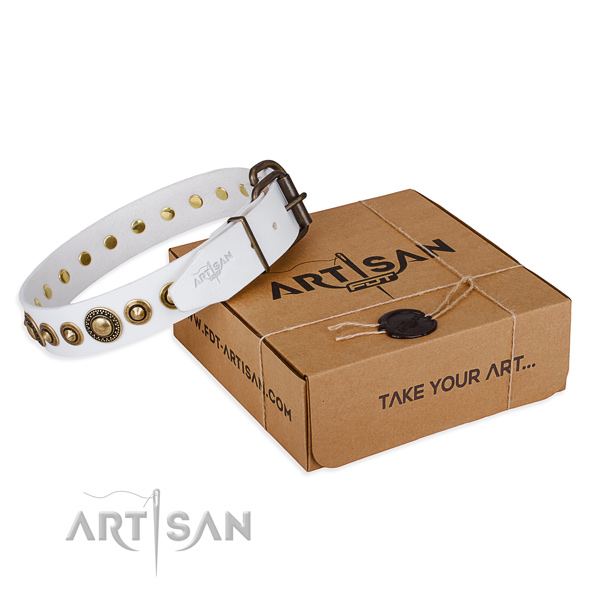 High quality full grain natural leather dog collar crafted for fancy walking