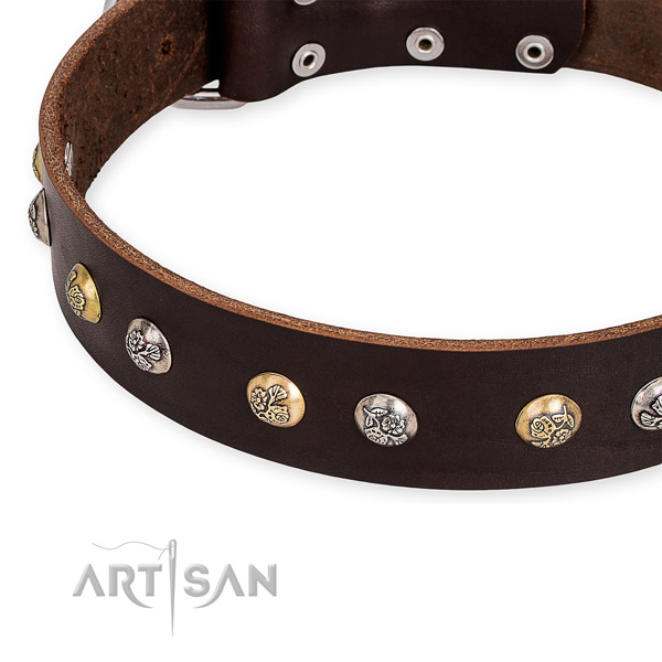 Full grain natural leather dog collar with incredible reliable adornments