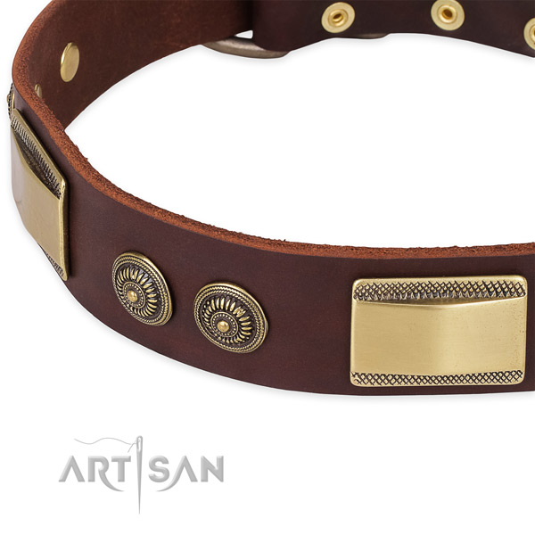 Awesome leather collar for your impressive dog