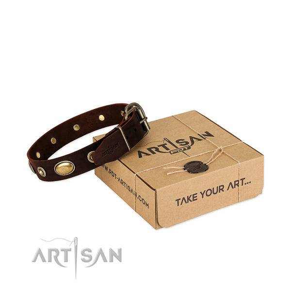 Rust-proof traditional buckle on natural leather dog collar for your four-legged friend