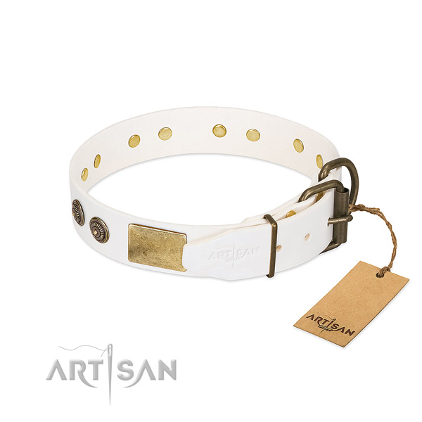 Durable fittings on genuine leather collar for everyday walking your doggie