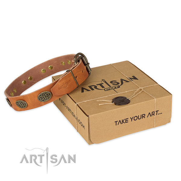 Rust-proof buckle on genuine leather collar for your attractive dog