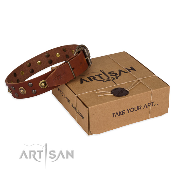 Rust resistant fittings on full grain natural leather collar for your stylish canine