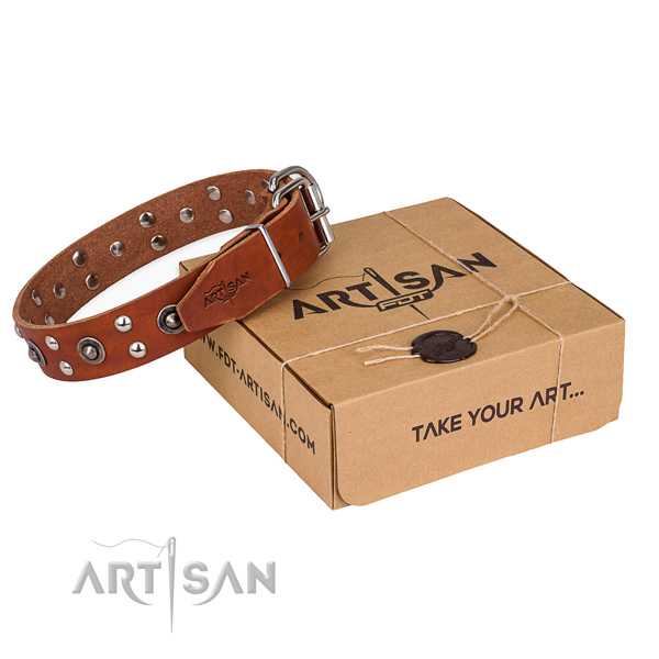Rust resistant fittings on leather collar for your lovely pet