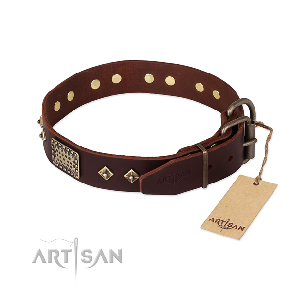 Genuine leather dog collar with strong traditional buckle and studs
