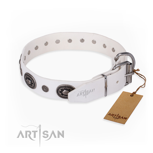 Flexible full grain natural leather dog collar created for walking