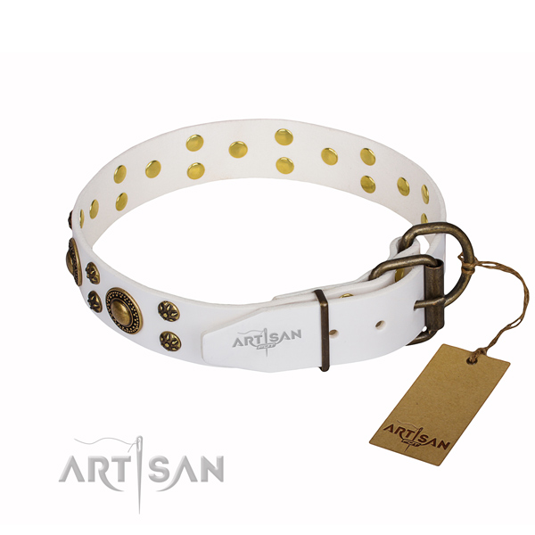 Handy use embellished dog collar of finest quality genuine leather