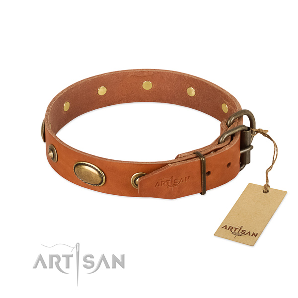 Corrosion resistant decorations on full grain genuine leather dog collar for your four-legged friend