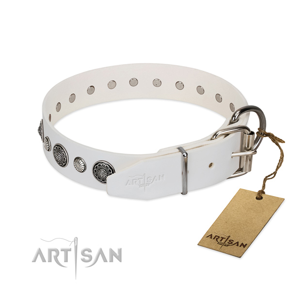 Best quality leather dog collar with corrosion resistant fittings