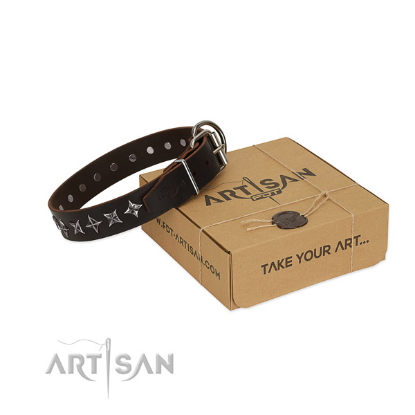 Walking dog collar of quality full grain genuine leather with decorations