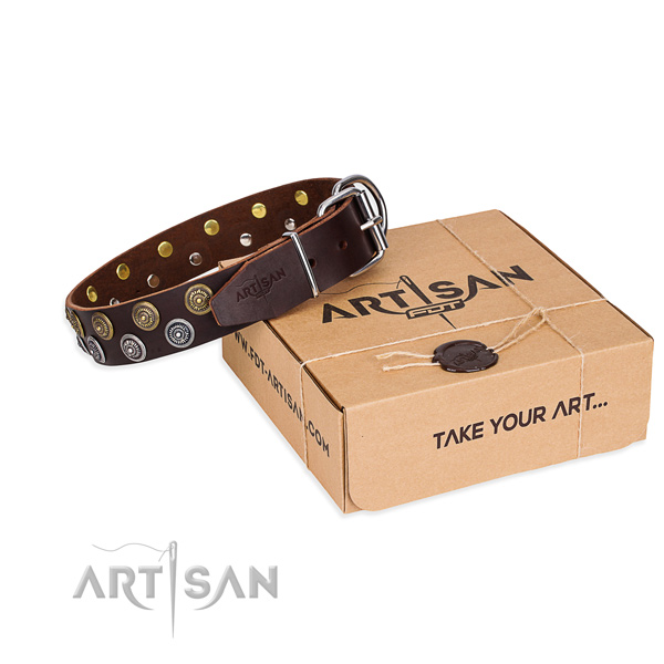 Everyday walking dog collar of best quality full grain genuine leather with decorations
