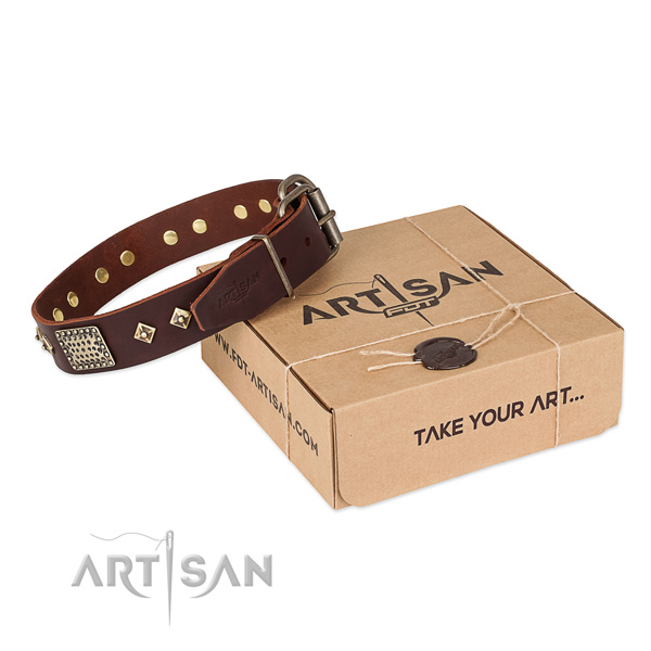 Easy wearing genuine leather collar for your handsome pet