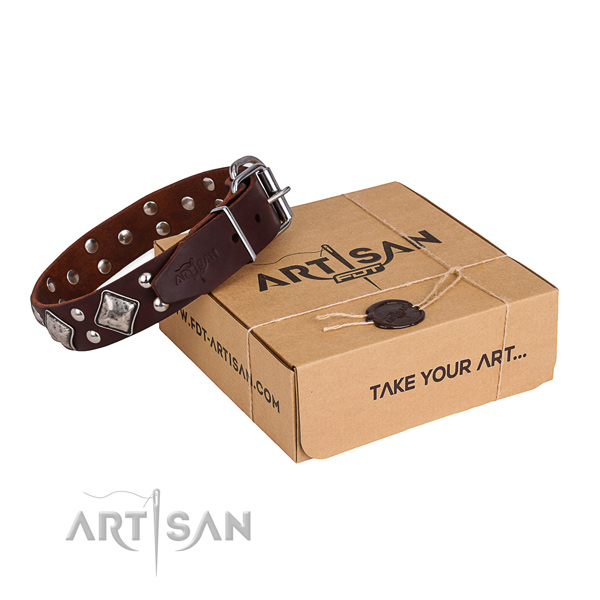 Walking dog collar with Exquisite rust-proof embellishments