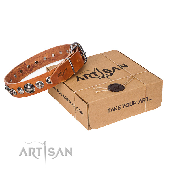 Full grain genuine leather dog collar made of soft material with reliable traditional buckle
