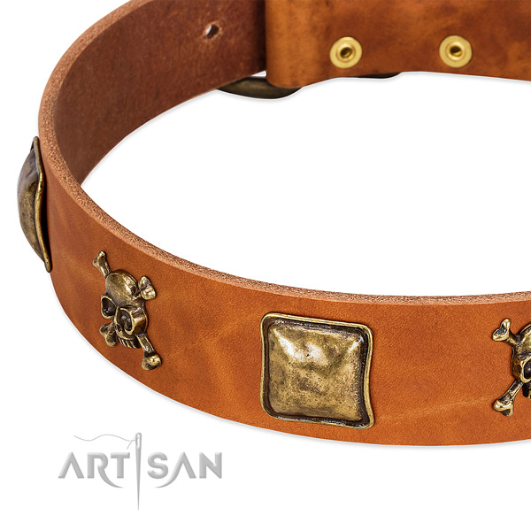 Unusual genuine leather dog collar with corrosion resistant decorations