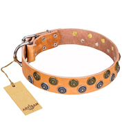 """Precious Sparkle"" FDT Artisan Handcrafted Tan Leather Amstaff Collar"