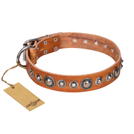 """Daily Chic"" FDT Artisan Tan Leather Amstaff Collar with Decorations"