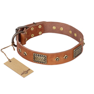 """Catchy Look"" FDT Artisan Decorated Tan Leather Amstaff Collar"