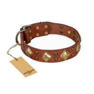 """Flight of Fancy"" FDT Artisan Adorned Leather Amstaff Collar"