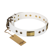 """Precious Necklace"" FDT Artisan White Leather Amstaff Collar with Old Bronze Look Plates and Studs"