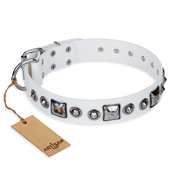 """Lustre of Fame"" FDT Artisan White Studded Leather Amstaff Collar"