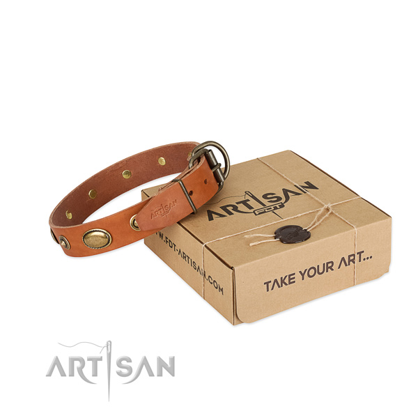 Strong studs on leather dog collar for your four-legged friend
