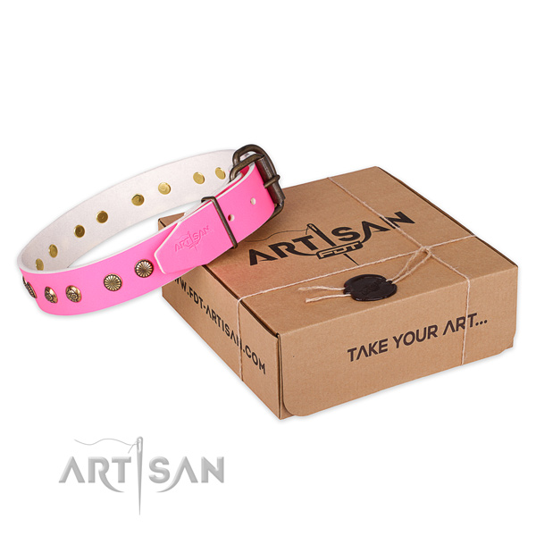 Rust resistant hardware on full grain natural leather collar for your impressive dog