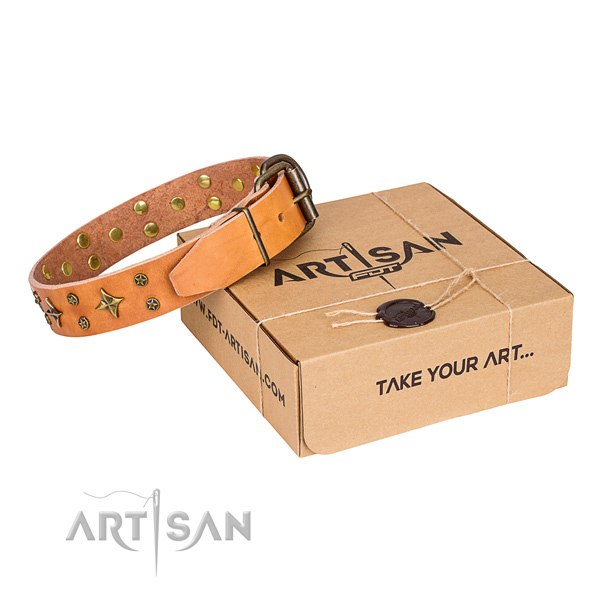Daily use dog collar of best quality leather with embellishments