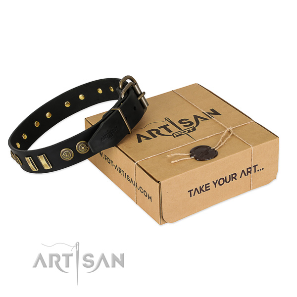 Rust-proof embellishments on leather dog collar for your four-legged friend